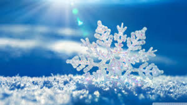 雪・雪・雪♪