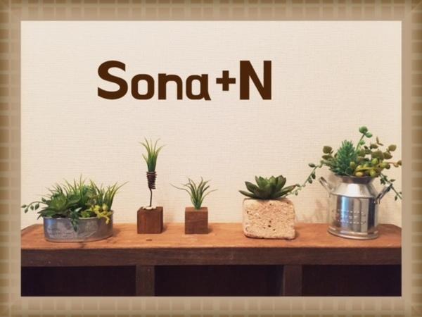 sona+N(ソナプラスエヌ)