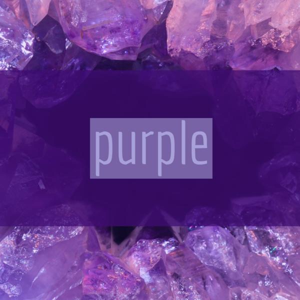 紫が気になる?!